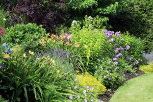 Harford County Perennials Baltimore County Landscape Design